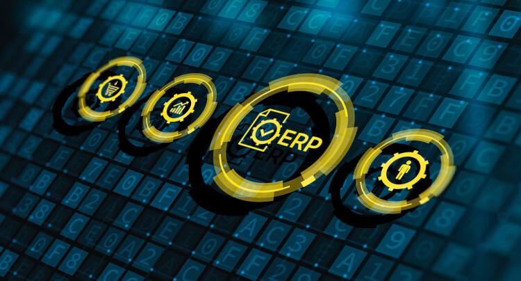 スタートアップ企業向けERPを導入して経営の効率化と内部統制の両立