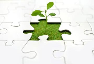 企業の成長戦略に必要不可欠な専門化と外部連携